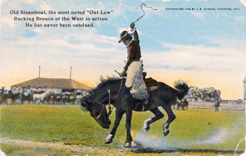 "Colored postcard showing ""Steamboat"" the bucking horse in action (WSA P90-28)"